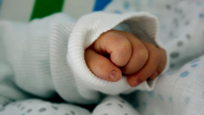 Вологодские родители называют детей редкими именами