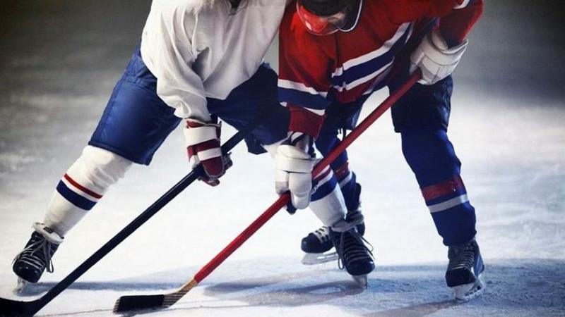За Кубок Мэра Вологды сразятся хоккеисты областной столицы и Рыбинска