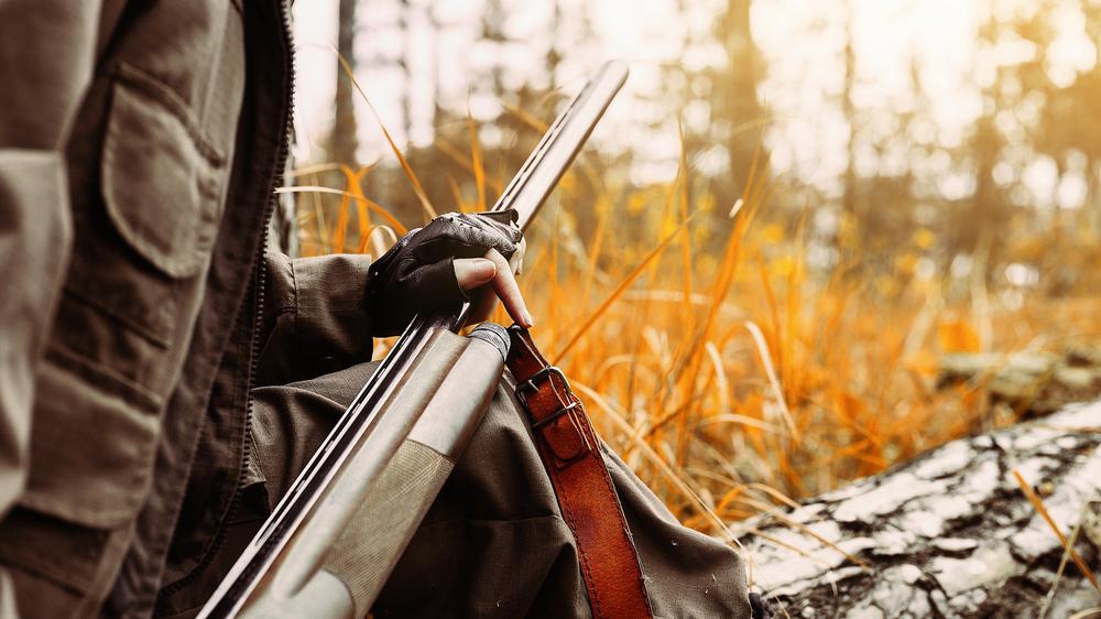 Условный срок получила взяточница из Чагоды, выдававшая разрешения на охоту