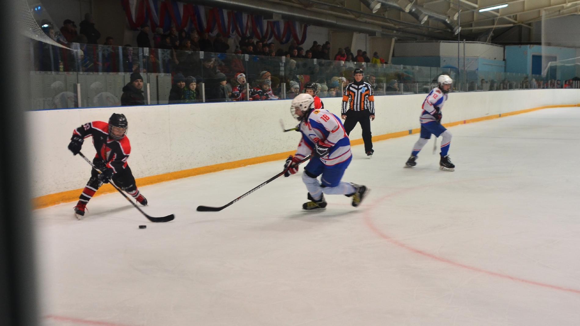 ВДмитрове стартовал финал Всероссийского турнира «Золотая шайба»