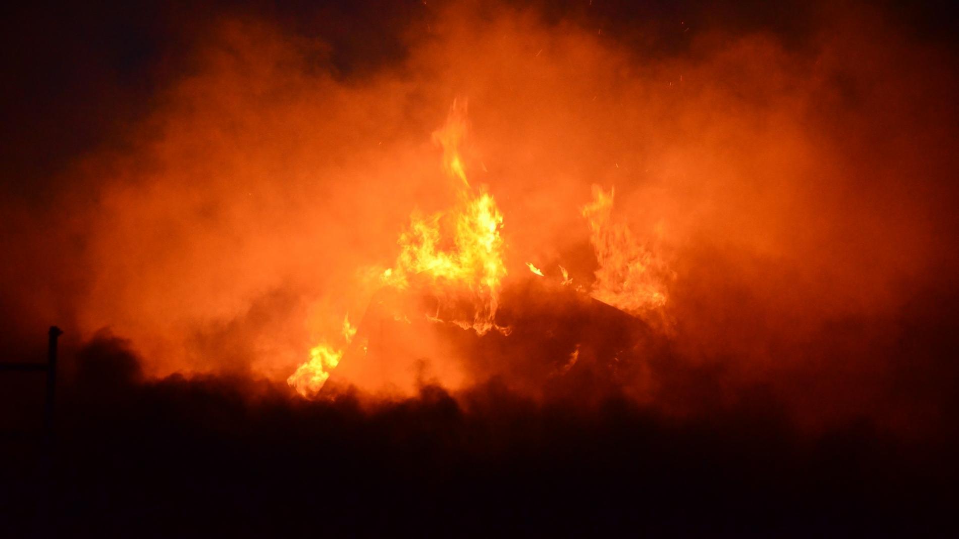 Ферму, где впламени погибли практически 60 голов скота, могли сжечь специально